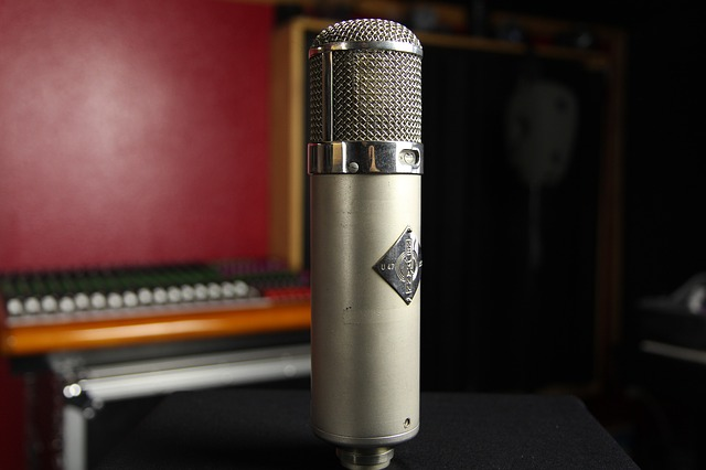 microphone-834821_640